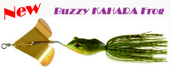 New BUZZY KAHARA FROG Arrived