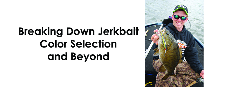 Breaking Down Jerkbait Color Selection and Beyond